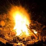Biesiada przy ognisku